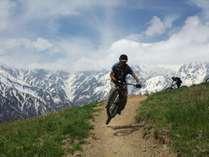 白馬岩岳MTBパーク イメージ画像
