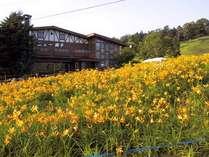 ホテル ニュー横手 (長野県)