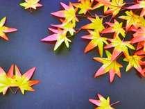 【とっておき!秋の料理フェア】≪10月特別企画≫泊まるなら今!大満足の10大特典付秋のお造り大好きプラン