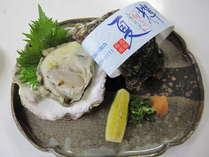 鳥取の牡蠣(夏輝)
