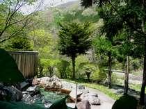 森の湯 ハミングバ-ド