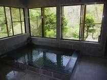 森の湯 ハミングバ-ド プランをみる