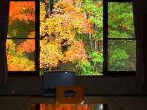 【絶景】お部屋の窓から紅葉満喫!(1階のお部屋)《去年11月撮影》