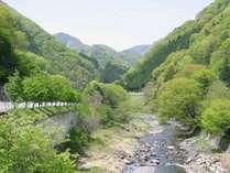 上野村の風景