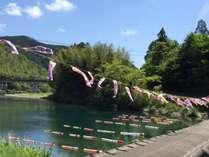 一斗俵沈下橋の鯉のぼりの風景