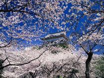 ■小田原城までお車で30分、電車では湯河原-小田原間は15分、小田原駅から徒歩10分です