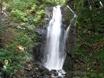 夏目漱石が最後に執筆した「明暗」の舞台になった湯河原の不動滝。宿からすぐ近くにございます