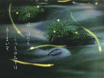 ■まるで京都貴船を連想させる奥湯河原の清流のなか、ゆうゆうよ舞う蛍は幻想的です。※6~7月