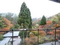 ■館内から色づく山々を見渡せます(秋)
