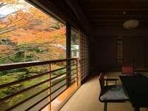 【和洋室 70平米】秋は鮮やかな紅葉をお部屋から眺められます。