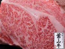【幻づくし】葉山牛サーロインステーキ <三浦半島葉山町産>