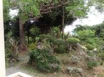 洋室のバルコニーから望む庭の風景