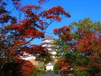 秋の姫路城