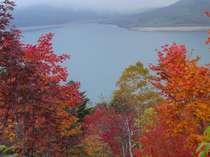 2008年10月8日・・・野反湖