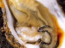 【牡蠣尽くしプラン】瀬戸内の牡蠣を食べつくせ★@1万円以下で牡蠣満喫♪メインは選べるお鍋!