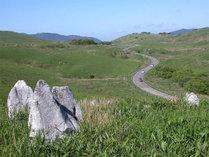 【カルストロード】カルストの大地をドライブで。気持ち良い風を受けてスイスイ~♪お楽しみ下さい