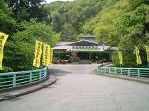 龍泉洞温泉ホテル (岩手県)