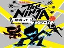 【アートを見よう】The NINJA -忍者ってナンジャ!?【みやざきアートセンター入場券付】