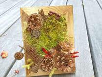 【森のフレーム】森を小さなフレームに収めて連れて帰ろう 二食付