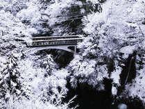 客室からの眺望一例-雪景色