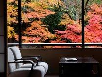 鶴仙渓の渓谷美を望む坪庭付き客室一例(紅葉)