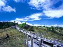 ◆白湯山遊歩道