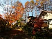 紅葉時ちから荘の風景