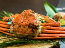 """【加能蟹-ひとりで1杯】<焼き・刺し・茹で>""""お客様のお好み""""で調理。これぞ、タグ付きブランド"""