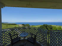 真っ青な空と海。遠くに見える水平線と瑞々しい芝生の緑を独り占めできる眺望。