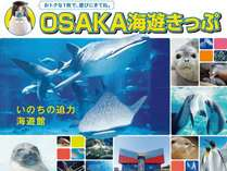 OSAKA海遊きっぷ付♪素泊まりプラン