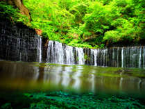 すがすがしい緑の清涼感。涼を求めて白糸の滝へ ~ photo by zephyrus-8bankan