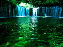 絶好調 白糸の滝