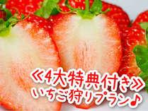 会場食で1,000円お得♪いちご狩り☆40分食べ放題&お菓子船&ソフトクリーム付で4倍楽しむ温遊旅行