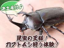 【昆虫の王様!カブトムシ狩り♪】家族で夏休みエンジョイ2食付プラン☆カブトムシのお土産付!