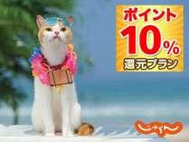 【ポイントUP☆天然温泉】*2名1室スーパールームでポイントUPプラン♪(2)<朝食・駐車場無料>■