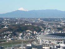 客室からの富士山(天候条件により見えない場合がございます)