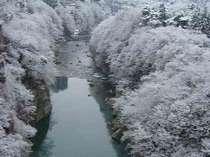 【冬の鬼怒川】普段はご覧いただけない雪景色に出会えるかもしれません。(客室より)