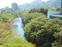 [春の鬼怒川/お部屋からの眺望]新緑と鬼怒川のせせらぎに心癒されます