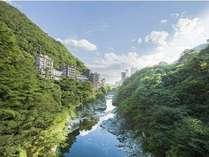[夏の鬼怒川/お部屋からの眺望]緑が生き生きと色付いています