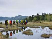 尾瀬沼のほとりを歩くと池塘に姿が映るポイントが♪尾瀬ヶ原にもこんなポイントがありますよ^^