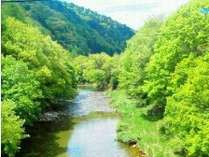 【南会津で遊ぼ!自然と触れ合う大人の休日】極上温泉と渓流釣りをダブルで楽しむ!連泊大歓迎