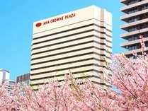 桜の季節が到来 有名なお花見スポット「造幣局」へのアクセスも良好です。