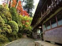 参道沿いに佇む当館。秋には紅葉も彩りを添えます。