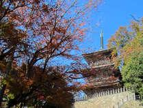 【清水寺】清水寺本堂へ続く階段。静寂な自然に囲まれた境内で心も現れる…