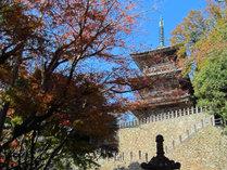 【清水寺】清水寺本堂へ続く階段。静寂な自然に囲まれた境内で心も洗われます