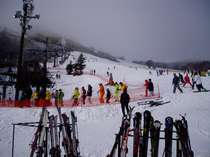 【お手軽スキー】送迎&リフト割引deスキー満喫-朝食付 【体験】