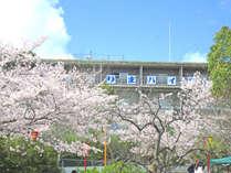 桜の名所「日岡山公園」の中にある施設。高台からの公園の桜は見ごたえあります。