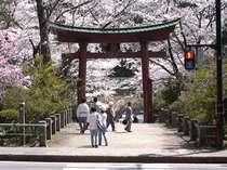 弥彦神社周辺の風景。一年を通して多くの人が訪れる。