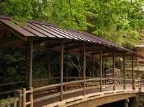 新緑が美しい景観に見事に溶け込む「五台橋」