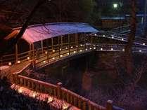 鹿教湯温泉冬の風物詩。期間中は毎日開催「氷灯ろう夢祈願」